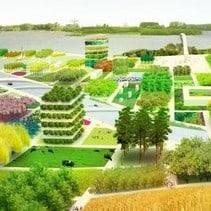 Growing Green Cities informatie bijeenkomst geWoonboot