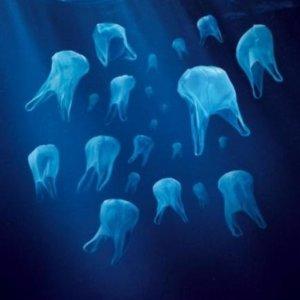 10 oktober – Kom plastic vissen tijdens de DAG VAN DE DUURZAAMHEID