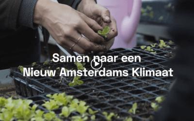 Nieuw Amsterdams Klimaat